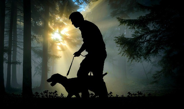 Truco educar perro de agua